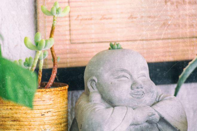 Balkon numer dwa, czyli wilcza jagoda i Budda